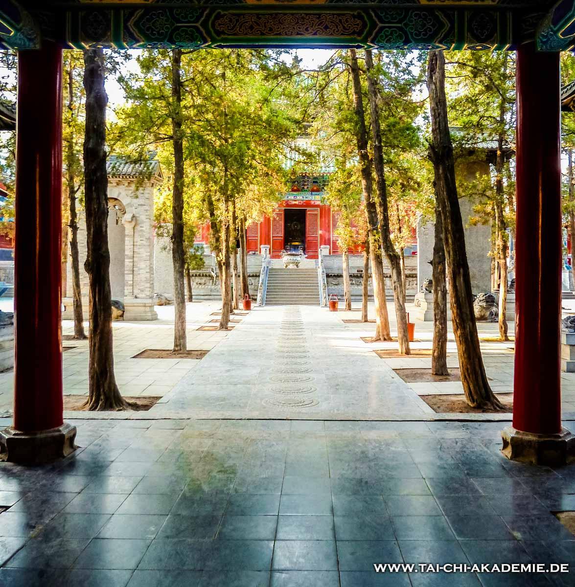 Ein Ziel seid meiner Jugend war das Training im Shaolin Tempel in China. Nun arbeite ich daran möglichst bald wieder dort zu trainieren. (Jörg Roth)