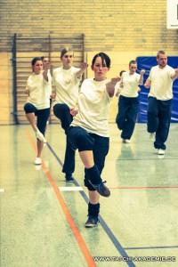 Kung Fu Kaiserslautern 3 Basic