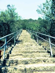 Die Treppen zu Bodhidharma sind schon als Wanderung nicht zu unterschätzen
