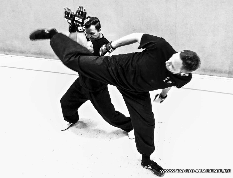 Die beiden Kung Fu Brüder trainieren seit ca 25 Jahren zusammen. Ihr Spezialgebiet ist der die kämpferische Anwendung des traditionellen Kung Fu.